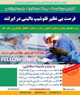 fellowships-ireland